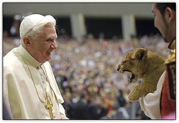 Pope_lion_cub