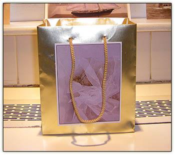 Cc_mini_beggars_purse