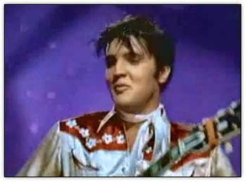 Elvis_teddybear