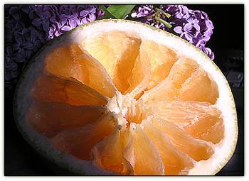 Grapfruitjuicy6