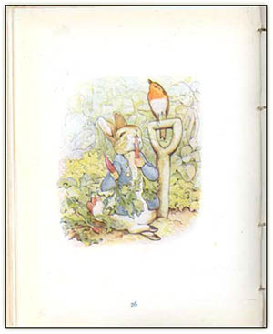 Peter_rabbit_potter