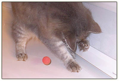 Tiny_ball_mitt3