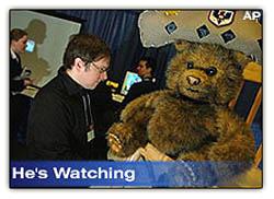 Beariswatching
