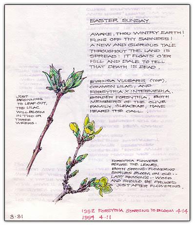 Gardenersjournal2