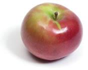 Macintoshapple
