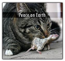 Peaceonearth