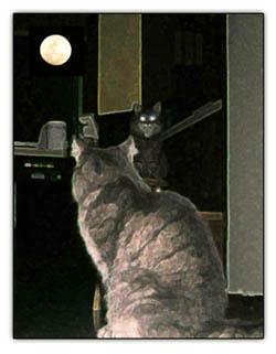 mooncats2