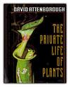 privatelivesplants.jpg